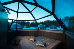 Inside the glass igloo of Arctic Snow Hotel in Finnish Lapland